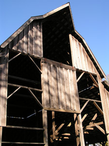 old barn at Bald Hill: photo by Sienna